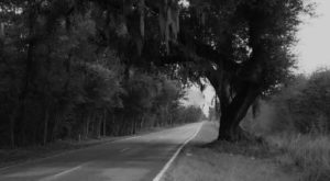 Stay Away From South Carolina's Most Haunted Street After Dark Or You May Be Sorry