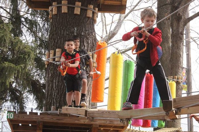 Treetop Adventures at Elmwood Park Zoo Is An Epic Adventure Park In
