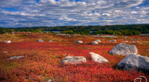 Escape To These 12 Hidden Oases In Maine To Find Peace And Quiet