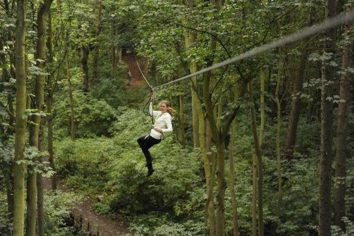 Find listings related to Zip Line in Downtown on 0549sahibi.tk See reviews, photos, directions, phone numbers and more for Zip Line locations in Downtown, Pittsburgh, PA. Start your search by typing in the business name below.