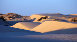 The Texas Sand Dunes That Will Transport You To Another World
