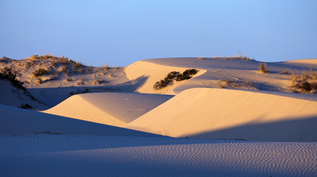 The Monahans Sandhills Are The Most Unusual Beautiful