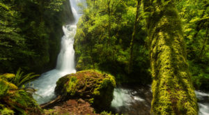 A Magically Beautiful Waterfall Is Hiding At The End Of A Short, Easy Hike In Oregon