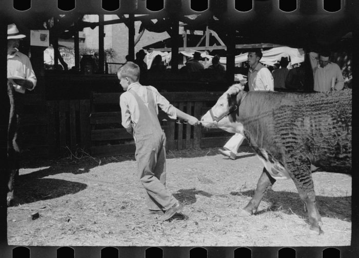 Focus Lee County >> These 27 Rare Photos Show Iowa's Farming History Like Never Before