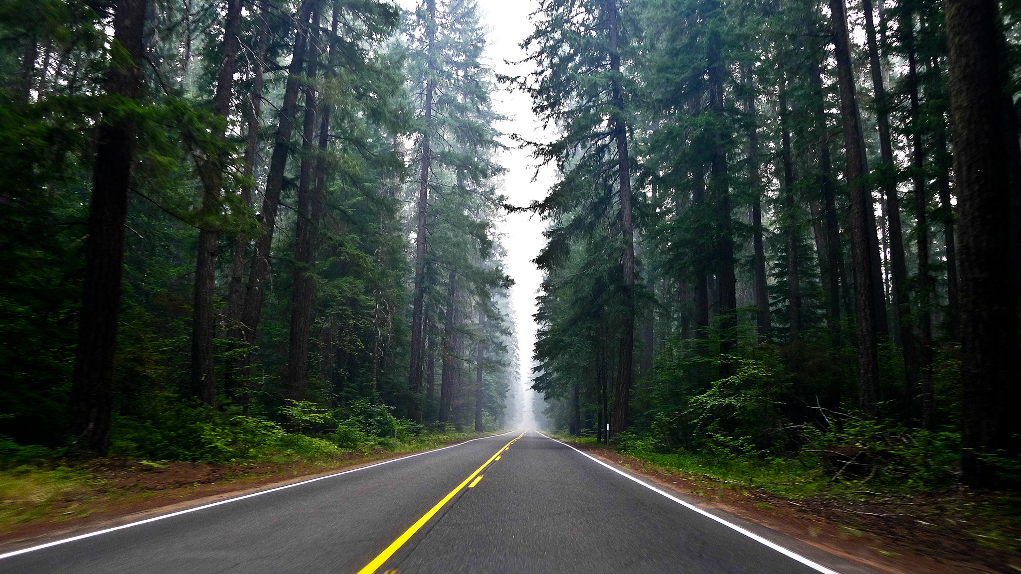 Beautiful Northern California Drop Top: 11 Of The Most Beautiful Scenic Byways In Northern California