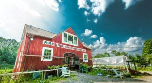 There's A Bakery On This Beautiful Farm In Connecticut And You Have To Visit