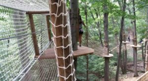 There's An Adventure Park Hiding In The Middle Of A Kentucky Forest And You Need To Visit