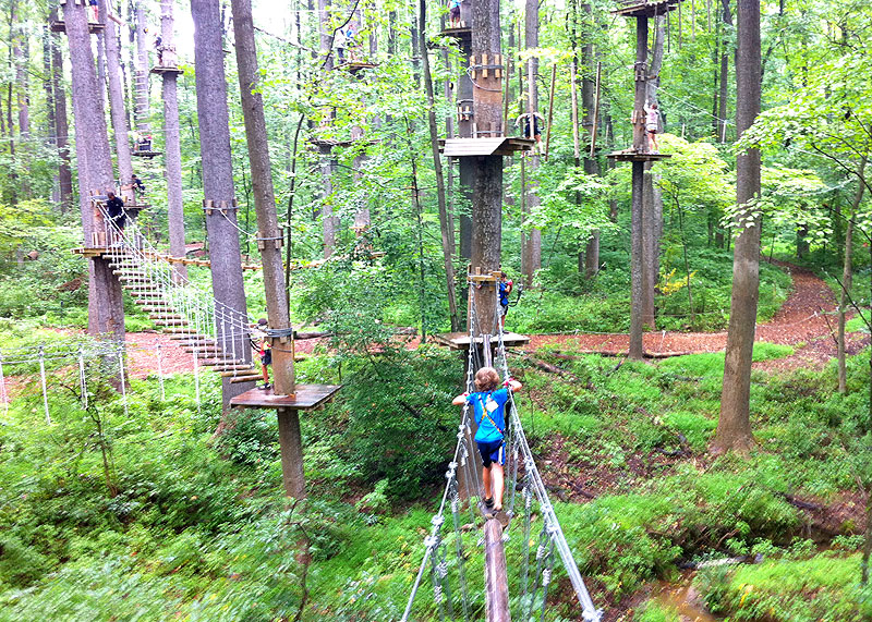 There's An Adventure Park Hiding In The Middle Of A Massachusetts Forest And You Need To Visit