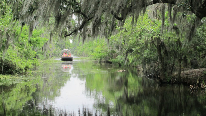 the day trip of a lifetime you can only take in louisiana