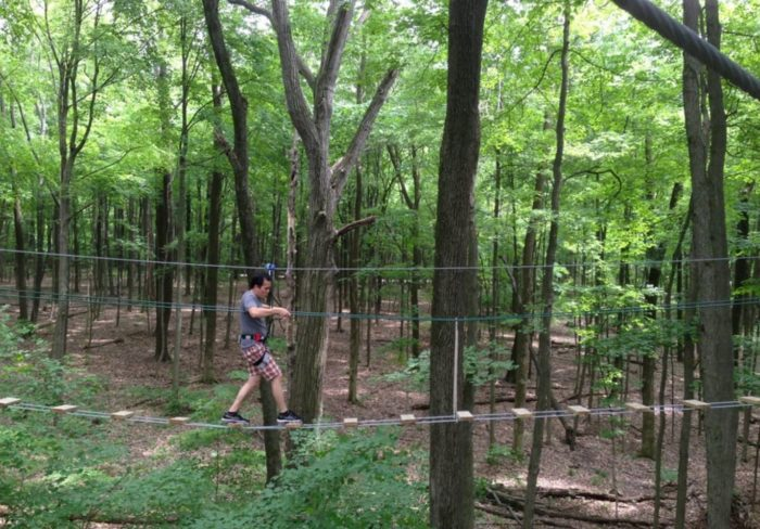 Go Ape Adventure Park Is A Fun Forest Park In Indiana
