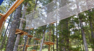 There's An Adventure Park Hiding In The Middle Of A Wyoming Forest And You Need To Visit