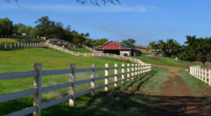 You're Guaranteed To Love A Trip To This Epic Dairy Farm In Hawaii