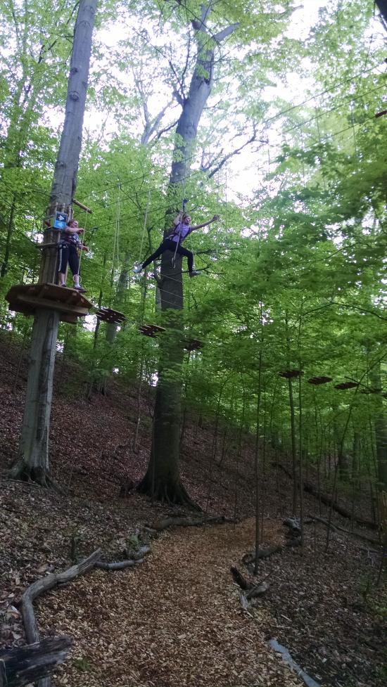 Go Ape Treetop Adventure At Mill Stream Run Recreation