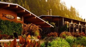 Get Off The Grid At This Beautiful, Remote Resort In Oregon
