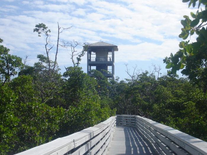 Anne Kolb Nature Center Observation Tower