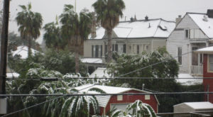 New Orleans Was Blanketed In Snow In 2008 And It Will Never Be Forgotten