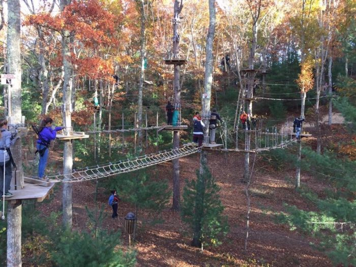 There S An Adventure Park Hiding In The Middle Of A Massachusetts Forest And You Need To Visit