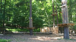 There's An Adventure Park Hiding In The Middle Of An Ohio Forest And You Need To Visit