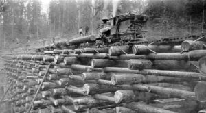 These 7 Rare Photos Show Portland's Logging History Like Never Before