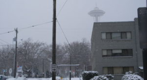 A Massive Blizzard Blanketed Washington In Snow In 2008 And It Will Never Be Forgotten