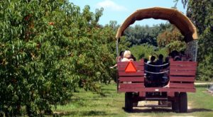There's a Winery On This Beautiful Farm In New Jersey And You Have To Visit