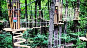 There's An Adventure Park Hiding In The Middle Of An Indiana Forest And You Need To Visit
