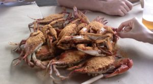 13 Undeniable Things Every True Marylander Has Done At Least Once