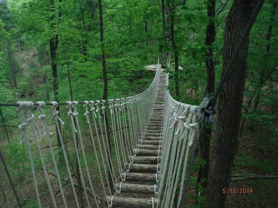 Theres An Adventure Park Hiding In The Middle Of A Virginia Forest And You Need To Visit