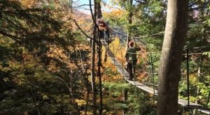 There's An Adventure Park Hiding In The Middle Of A New Hampshire Forest And You Need To Visit