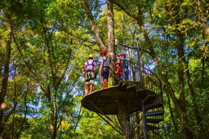 Zipline Hilton Head Is A Fun Adventure Park In A South