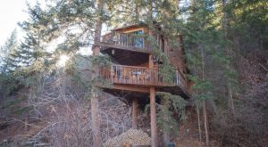 Sleep Underneath The Forest Canopy At This Epic Treehouse Near Denver