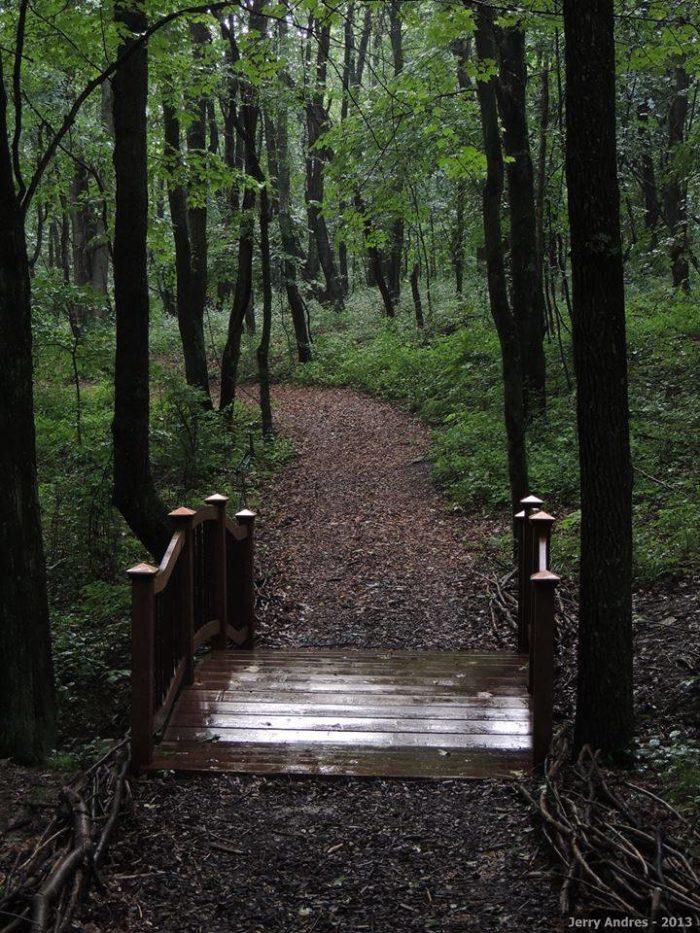 Fairy Garden Stepping Stones