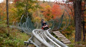 The Mountain Coaster In Vermont That Will Take You On A Ride Of A Lifetime