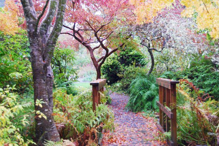 the connie hansen garden is a lovely 125 acre hidden gem tucked away in the coastal town of lincoln city - Hidden Garden