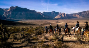 7 Magical Horseback Riding Adventures You Can Only Have In Nevada