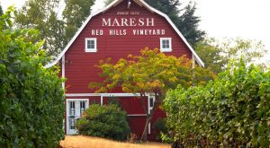 This Beautiful Barn In Oregon Is Now A Wine Tasting Room And You'll Want To Visit