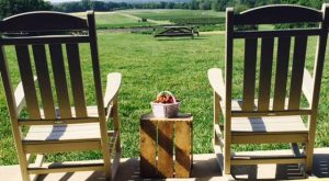 There's A Bakery On This Beautiful Farm In Virginia And You Have To Visit