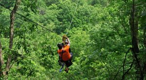 There's An Adventure Park Hiding In The Middle Of An Illinois Forest And You Need To Visit