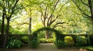 The Secret Garden In South Carolina You're Guaranteed To Love