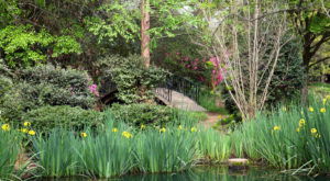The Secret Garden In Mississippi You're Guaranteed To Love