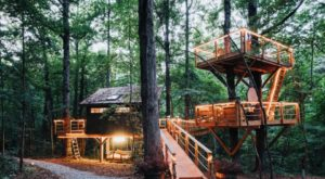 Sleep Underneath The Forest Canopy At This Epic Treehouse In South Carolina