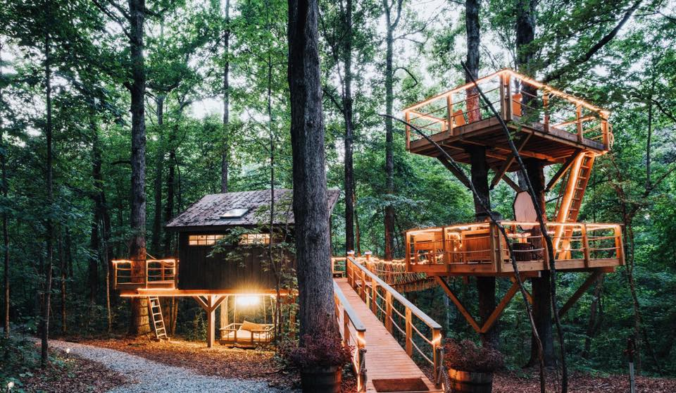 Sleep Underneath The Forest Canopy In This Romantic