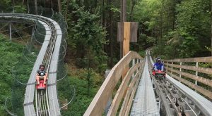 The Mountain Coaster In Tennessee That Will Take You On A Ride Of A Lifetime