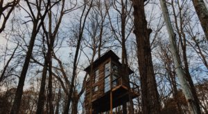 Sleep Underneath The Forest Canopy At This Epic Treehouse In Tennessee
