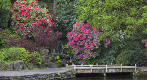 The Secret Garden In Portland You're Guaranteed To Love