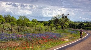 The Enchanting Scenic Drive In Texas That Everyone Should Take This Spring