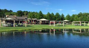 The Remote Winery Near Pittsburgh That's Picture Perfect For A Day Trip