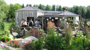 The Remote Winery In North Dakota That's Picture Perfect For A Day Trip