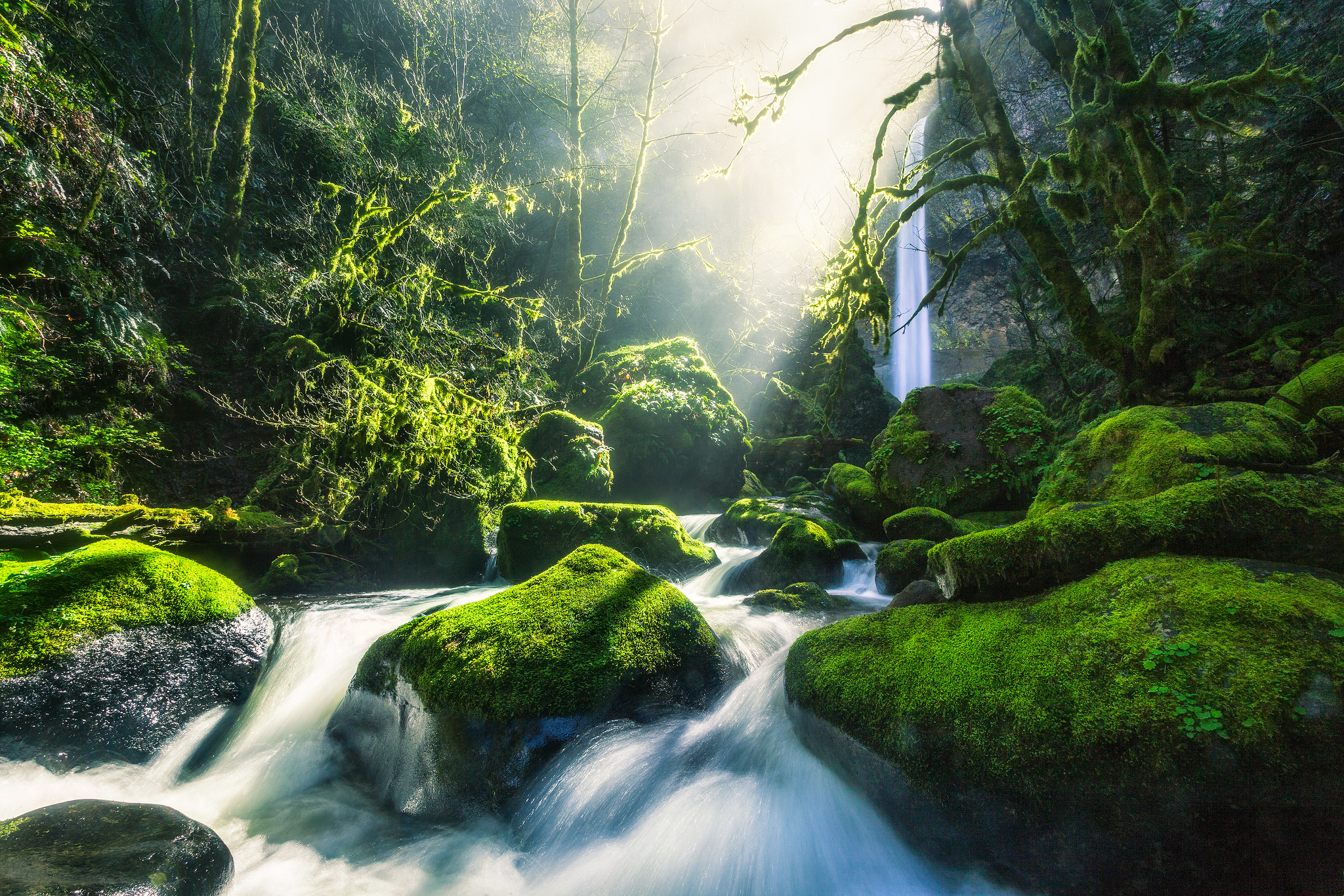 This Easy Hidden Waterfall Hike In Oregon Is Absolutely