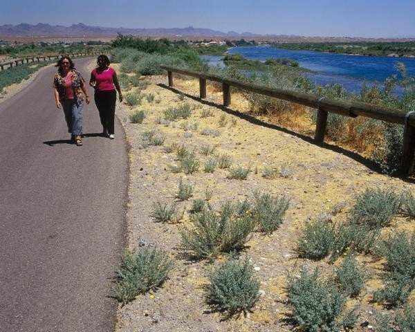 Bullhead City Arizona Is A Charming Town On The Colorado
